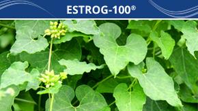 estrgo_g_100
